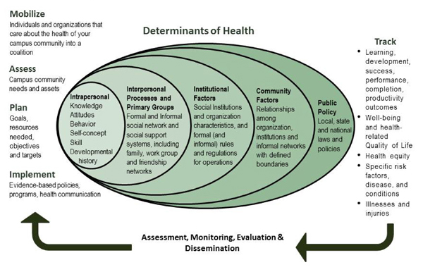 the social and economic factors that determine the health of an individual