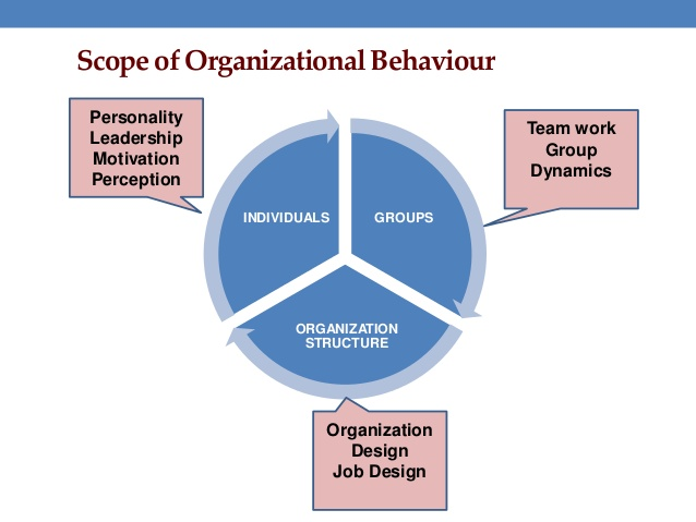 organizational behavior line management Organizational behavior management the florida institute of technology (florida tech) offers a degree in organizational behavior management (obm) obm is the application of behavioral principles to solve problems in organizational settings.